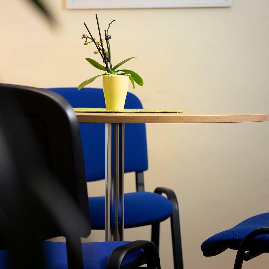 Beratungsraum-blauer-Salon-Ried-frauennetzwerk3
