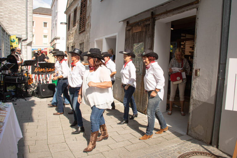 Line Dance Ladies von Andrichsfurt